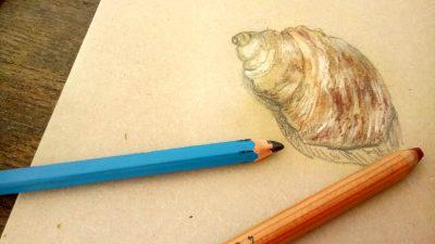 Pencil and pastel artwork