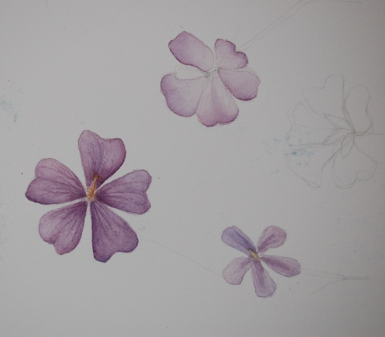 Watercolour washes on smooth paper